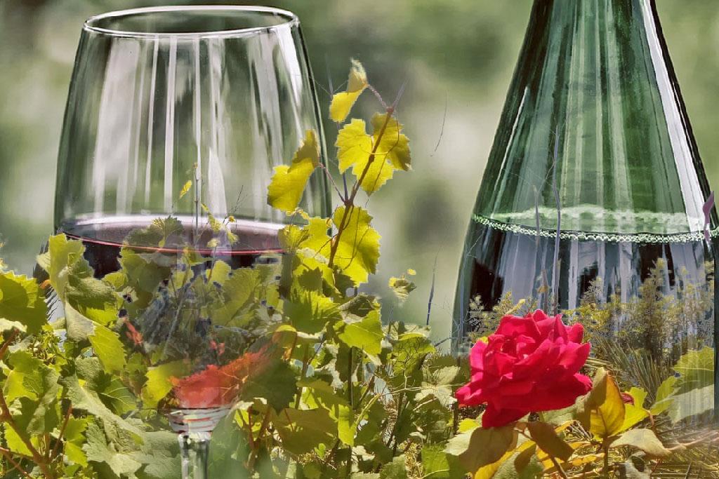 Wine Alicante